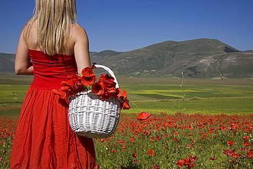 Woman in poppy field, Castelluccio di Norcia, Norcia, Umbria, Italy, Europe