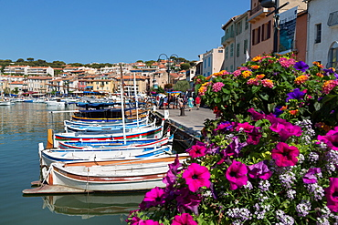 Traditional fishing boats moored in the harbour of the historic town of Cassis, Cote d'Azur, Provence, France, Mediterranean, Europe
