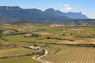 Sierra de Cantabria mountains near San Vicente de la Sonsierra, La Rioja, Spain, Europe