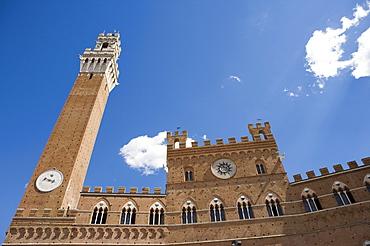 Piazza del Campo with Palazzo Pubblico, Sienna, Tuscany, Italy