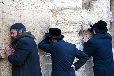 Men praying at the Wailing Wall, Jewish Quarter of the Western Wall Plaza, Old City, Jerusalem, Israel, Middle East