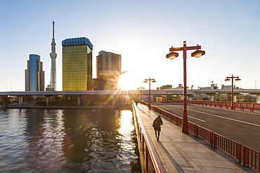 City skyline and the Skytree on the Sumida River at dawn, Tokyo, Japan, Asia