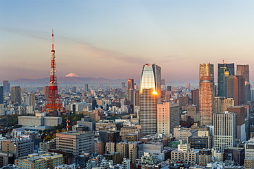 Elevated evening view of the city skyline and iconic Tokyo Tower, Tokyo, Japan, Asia