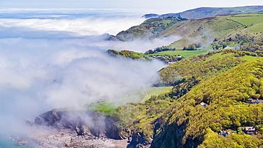 Woody Bay near Lynton, North Devon coast, Exmoor National Park, Devon, England, United Kingdom, Europe