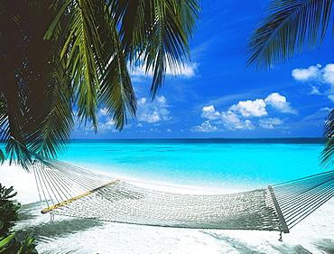 Desert island and hammock on the beach, Maldives, Indian Ocean, Asia