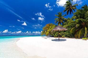 Maldives beach, lagoon and palm trees, The Maldives, Indian Ocean, Asia