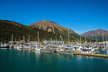 Seward, Resurrection Bay, Kenai Peninsula, Alaska, United States of America, North America