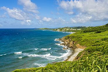 Coast of Saint Croix, US Virgin Islands