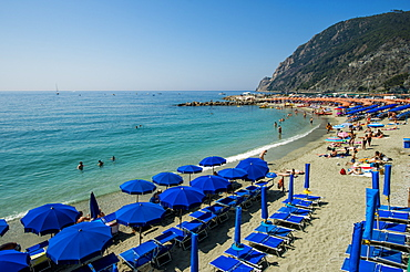 Beach umbrellas lining the beach in Monterosso al Mare, Cinque Terre, UNESCO World Heritage Site, Liguria, Italy, Europe
