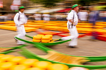 Alkmaar cheese market, Alkmaar, North Holland, Netherlands, Europe