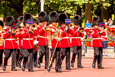 Changing of the Guard ceremonies at Buckingham Palace, London, England, United Kingdom, Europe
