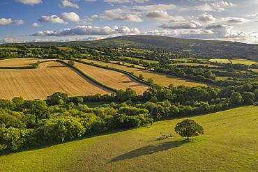 Aerial vista by drone of rolling countryside, Devon, England, United Kingdom, Europe