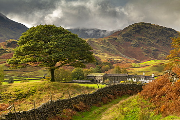 Autumn in the Langdale Valley, Lake District National Park, UNESCO World Heritage Site, Cumbria, England, United Kingdom, Europe