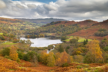 Autumn colours surrounding Rydal Water in the Lake District National Park, UNESCO World Heritage Site, Cumbria, England, United Kingdom, Europe