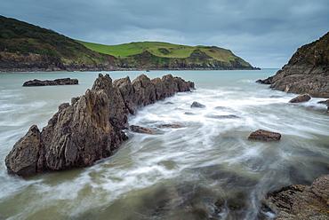 Dramatic coastline at Hope Cove in the South Hams, Devon, England, United Kingdom, Europe