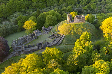 Aerial image showing the ruins of Okehampton Castle on a spring morning, Okehampton, Devon, England, United Kingdom, Europe
