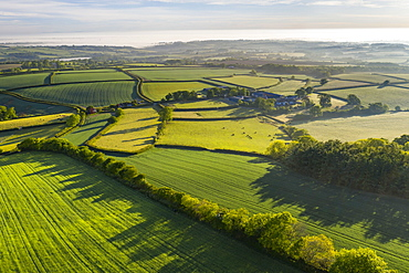 Verdant rolling countryside surrounding Livaton Farm, South Tawton, Devon, England, United Kingdom, Europe