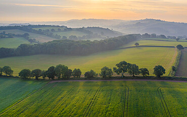 Aerial vista of rolling farmland in summer time, Devon, England. Summer (June) 2020.