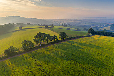 Aerial view of rolling countryside at dawn on a hazy summer day, Devon, England. Summer (June) 2020.
