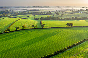 Aerial vista of rolling Devon countryside near Spreyton in autumn, Devon, England, United Kingdom, Europe