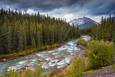 The Maligne River meandering through the Canadian Rockies, Jasper National Park, UNESCO World Heritage Site, Alberta, Canada, North America