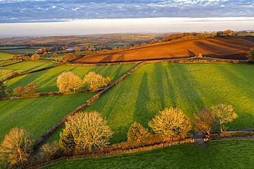 Aerial vista of Dartmoor countryside in rich evening sunlight, Livaton, Devon, England. Spring (March) 2021.