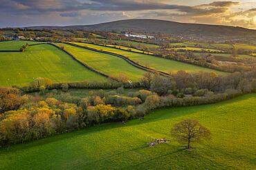 Rolling Dartmoor countryside in evening light, Devon, England. Spring (April) 2021.