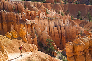 Hiker photographing on the Queens Garden Trail, Bryce Canyon National Park, Utah, United States of America, North America
