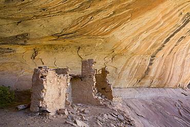 Anasazi Ruins, Monarch Cave, Butler Wash, near Bluff, Utah, United States of America, North America
