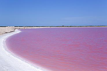 Pink Lakes, Las Coloradas, Yucatan, Mexico, North America