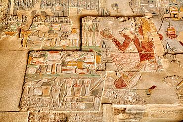 Reliefs, Sanctuary of Amun-Re, Hatshepsut Mortuary Temple (Deir el-Bahri), UNESCO World Heritage Site, Luxor, Thebes, Egypt, North Africa, Africa