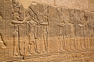 Reliefs, Temple of Arsnuphis, Temple of Isis, UNESCO World Heritage Site, Philae Island, Aswan, Nubia, Egypt, North Africa, Africa