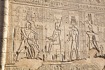 Bas Relief, External Wall, Temple of Khnum, Esna, Egypt, North Africa, Africa