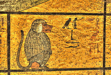 Baboon, West Wall Mural, Tomb of Tutankhamun, KV62, Valley of the Kings, UNESCO World Heritage Site, Luxor, Thebes, Egypt, North Africa, Africa