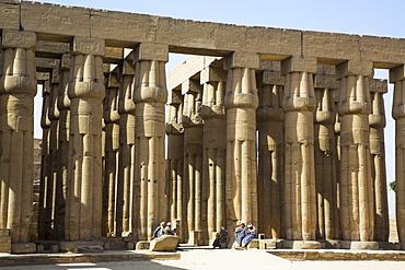 Columns of Hypostyle Hall, Luxor Temple, UNESCO World Heritage Site, Luxor, Thebes, Egypt, North Africa, Africa
