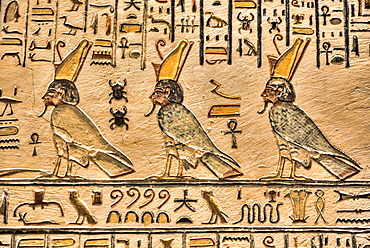 Relief of Pharaohs, Tomb of Ramses V and VI, KV9, Valley of the Kings, UNESCO World Heritage Site, Luxor, Thebes, Egypt, North Africa, Africa