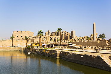 Sacred Lake, Karnak Temple Complex, UNESCO World Heritage Site, Luxor, Thebes, Egypt, North Africa, Africa