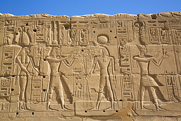 Reliefs of Deities and a Pharaoh on the right, Karnak Temple Complex, UNESCO World Heritage Site, Luxor, Thebes, Egypt, North Africa, Africa