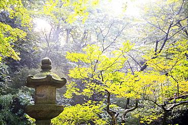 The Sankeien Garden, Yokohama, Tokyo, Japan, Asia