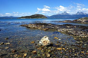 Coastal scene in the Tierra del Fuego National Park, Tierra del Fuego, Argentina, South America