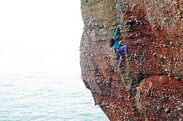 Rock climber in action, Watcombe Beach, South Devon, England, United Kingdom, Europe