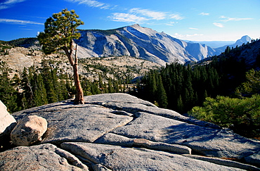 Olmstead Point, Yosemite National Park, UNESCO World Heritage Site, California, United States of America, North America