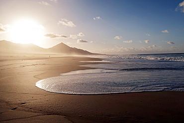Beach in Fuerteventura, Canary Islands. Spain, Atlantic, Europe