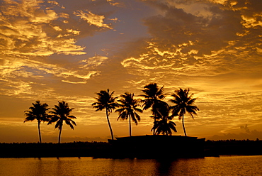 Sunset over the Backwaters, Alleppey, Kerala, India, Asia