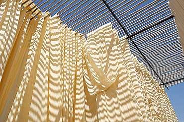 Washed bolts of cotton fabric hanging to dry on bamboo structure before being hand block printed, Bagru, Rajasthan, India, Asia