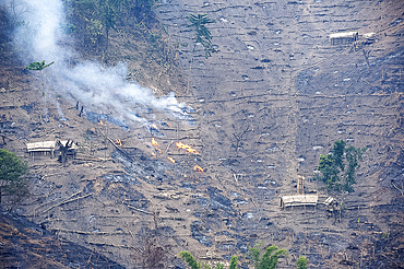 Workers' huts on Naga hillside being desecrated by the government slash and burn system to improve soil for agriculture, Nagaland, India, Asia