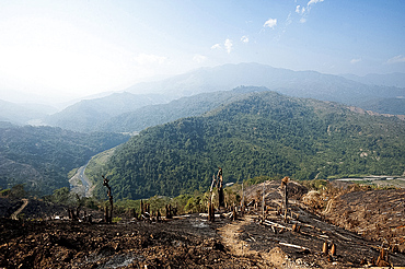 Green Naga hills stretching into the distance, scarred by brown scorched hill after slash and burn system has occurred, Nagaland, India, Asia
