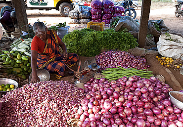 Woman in rural market selling pink onions and garlic, Chettinad, Tamil Nadu, India, Asia