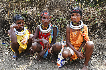 Godaba tribeswomen with traditional steel necklaces on their way home from the weekly tribal market, Onukadelli, Odisha, India, Asia