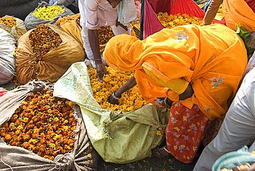 Woman buying marigolds, flower market, Bari Chaupar, Jaipur, Rajasthan, India, Asia